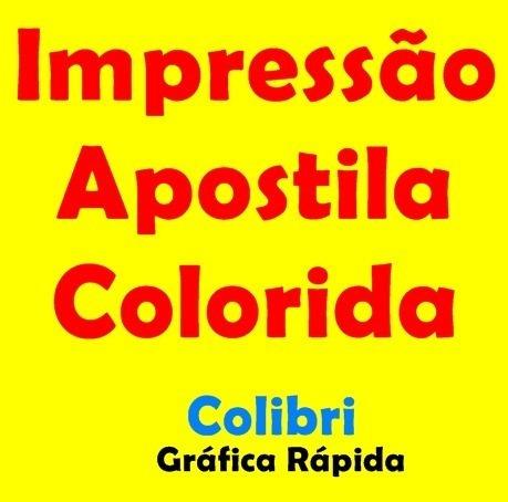100 Impressões Coloridas A4 - Apostilas, Artigos, Tcc