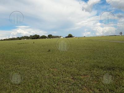 Rural Para Venda, 0 Dormitórios, Paranapanema - São Paulo - 6191