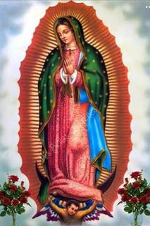 Lienzos De La Virgen De Guadalupe