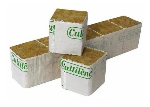 Lã De Rocha Germinação Clonagem Cultilene Block 4 X 4 - 50un