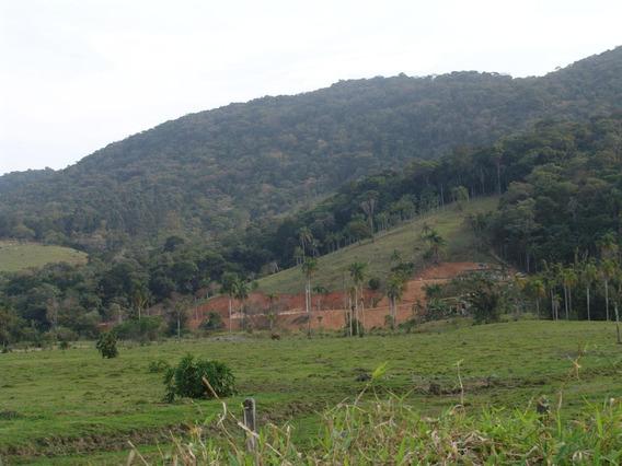 Chácara À Venda, 3 Hec Por R$ 320.000 - Colônia Santana - São José/sc - Ch0050