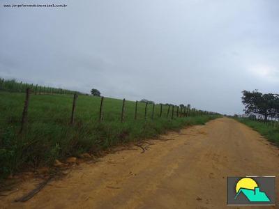 Fazenda Para Venda Em Paripueira - Fz-0055