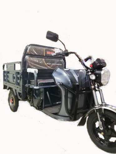 Triciclo Electrico, De Carga Varios Modelos Y Capacidades.
