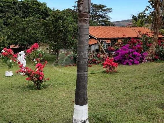 Lindo Sitio Para Venda Em Cajuru, Com 15 Hectares, Muito Bem Conservado, Linda Casa Sede, Dupla Aptidão, Muita Agua, Apenas 8km Da Cidade - St00012 - 68304090