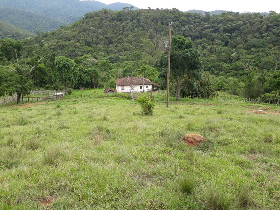Fazenda No Sul De Minas , Cidade De Liberdade , Com 145 Hectares, Várias Nascentes, Pequena Queda D