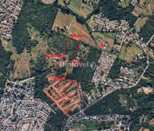 Terreno - Campo Novo - Ref: 10995 - V-10995
