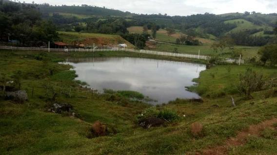sítio A Venda De 5,5 Alqueires Na Região De Ouro Fino Mg - 1225