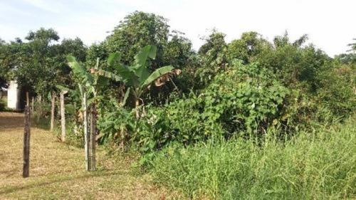 Terreno No Litoral Com 286 M² Em Itanhaém/sp 2910-pc