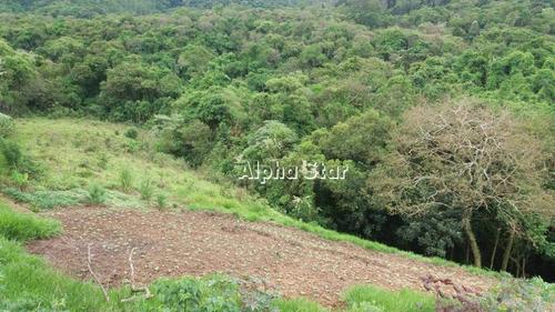 Imagem 1 de 22 de Área À Venda, 44724 M² Por R$ 3.800.000 - Parque Varanguera - São Roque/sp - Ar0047