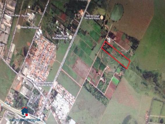 Vende-se Excelente Área Para Loteamento E Incorporação Com Área Total De 44.000 Metros. Localizada No Bairro Betel, Parte De Campinas, Atrás Da Propriedade Da Unicamp, Centro De P - Ar00014 - 323410