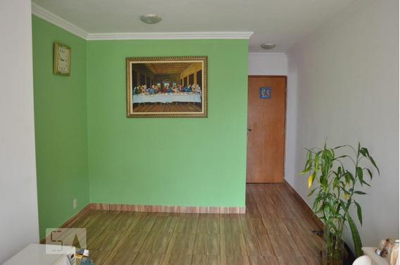 Apartamento Para Aluguel - Santana, 3 Quartos, 62 - 893011909