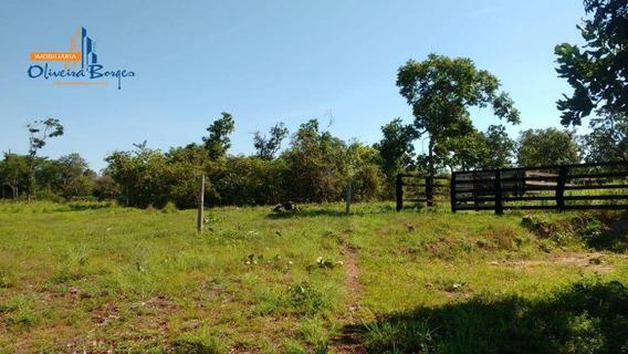 Chácara Com 3 Dormitórios À Venda, 242000 M² Por R$ 300.000 - Zona Rural - Niquelândia/go - Ch0047