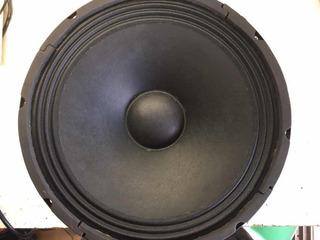 Parlante 12 Pulgadas 80 Watts