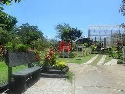Galpão Comercial Para Locação, Jardim Piratininga, Osasco - Ga0650. - Ga0650