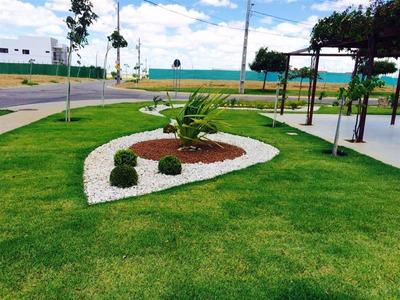Terreno - Venda - Vila Eduardo - Petrolina - M539991