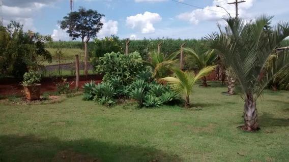 Chácara Residencial À Venda, Zona Rural, Ribeirão Preto. - Ch0016