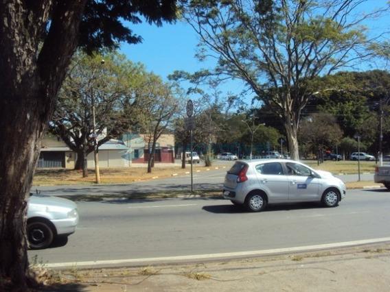 Terreno Para Locação Jardim Brasil, Terreno Para Locação Em Campinas - Te00387 - 34305309