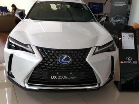 Lexus Vx 250 H 2020 2.0 Vvt Dynamic