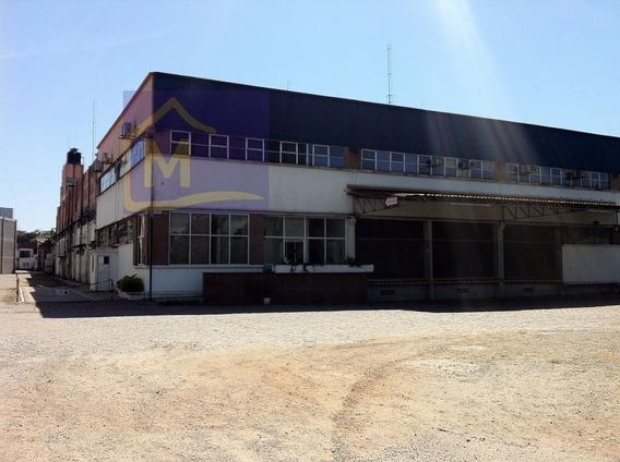 Comercial Para Venda, 0 Dormitórios, São Roque - Guarulhos - 632