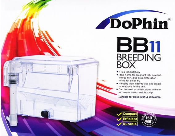 Dophin Bb11 Breeding Box