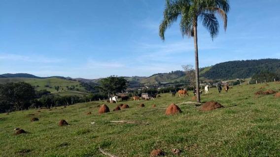 Sítio 40.000 À Venda, Estrada Bragança Tuiuti. - 9203