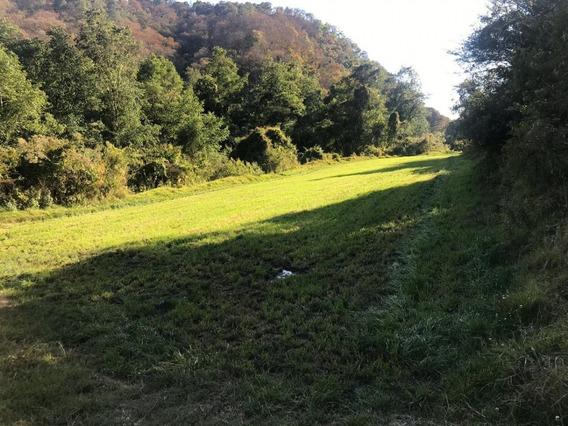 Finca O Rancho En Venta