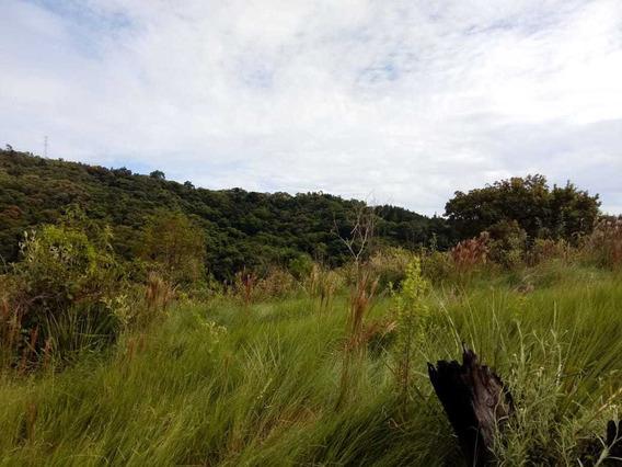 (k.a) Terrenos Demarcados Particular - Sp - Doc Ok - F. Dias
