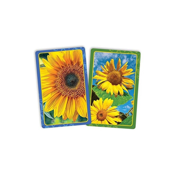 Springbok Puzzles Sunflowers Playing Cards