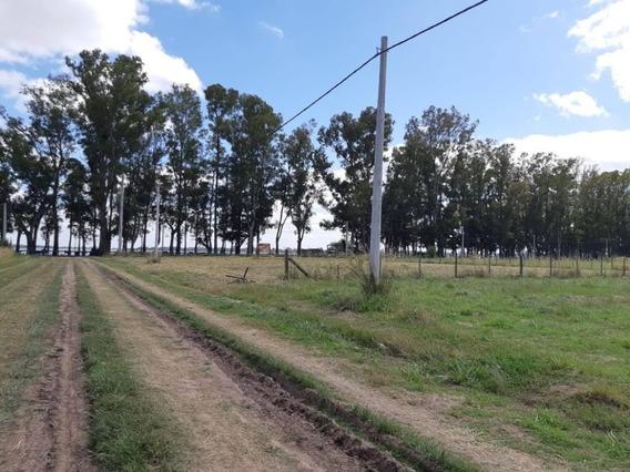 Terreno Frente A Laguna San Miguel Del Monte -dueño Directo