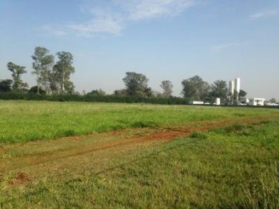 Área Para Alugar, 16500 M² Por R$ 11.500,00/mês - Parque Industrial Tânia Maria Covalenco - Nova Odessa/sp - Ar0004