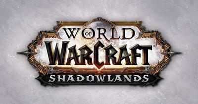 World Of Warcraft (ficha Wow, Oro, Expansiones Y Demás.)