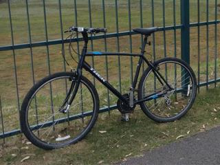Bicicleta Trek Verve 2