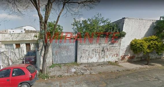 Terreno Em Parque Edu Chaves - São Paulo, Sp - 325827