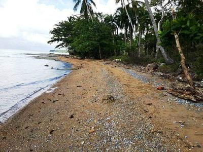 Lote De 26 Tareas En Samana / Con Playa