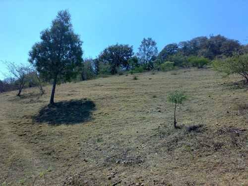 Terreno En Venta En Armadillo De Los Infante (municipio)