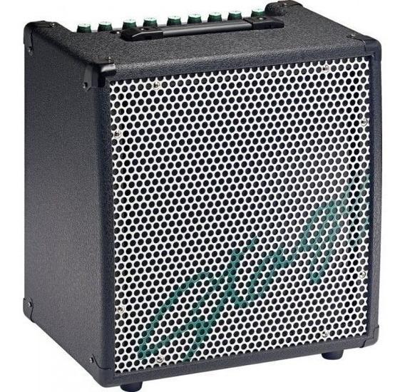 Amplificador Para Teclado 30 Watts 2 Canales Stagg Kba40