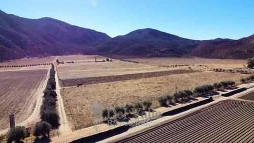 Imagen 1 de 7 de 10 A 40 Ha A Un Costado De La Cetto En Valle De Guadalupe