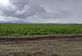 Estado De Mexico Terreno 5000 Hectareas Planas A $185.- El M2. Promocion