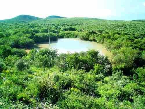 Rancho En Venta San Pedro Del Gallo Durango