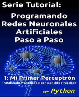 Libro Programando Redes Neuronales Artificiales Con Python