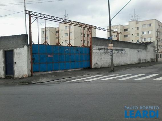 Area - Vila Guilherme - Sp - 476569