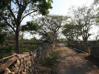 Hermosa Hacienda Lol-ha En Venta
