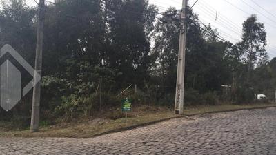 Terreno - Desvio Rizzo - Ref: 199068 - V-199068