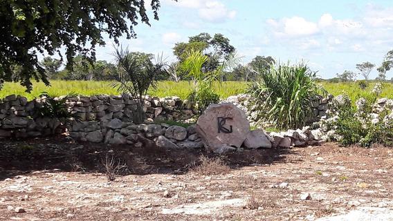 Excelente Rancho A La Venta De Los Mejores De La Zona