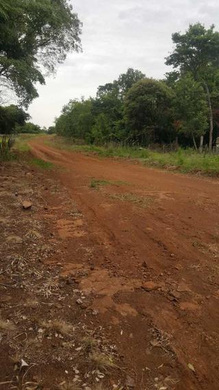 Chacra Campo Candelaria Misiones