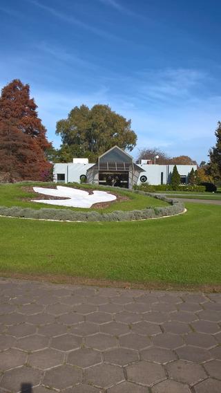 Parcela Cineraria Dentro Del Jardín De Paz Del Pilar.