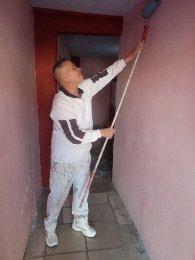 Imagen 1 de 5 de Pintores Profesionales