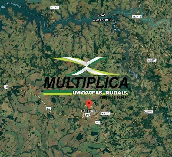 Fazenda A Venda Em Tupaciguara Mg 58,08 Hectares . - 338