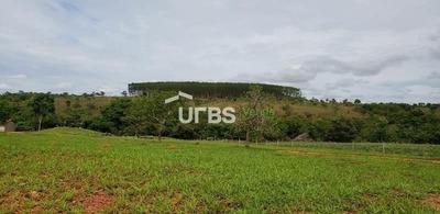 Fazenda Com 4 Dormitórios À Venda, 2952400 M² Por R$ 10.000.000 - Zona Rural - Ipameri/go - Fa0081
