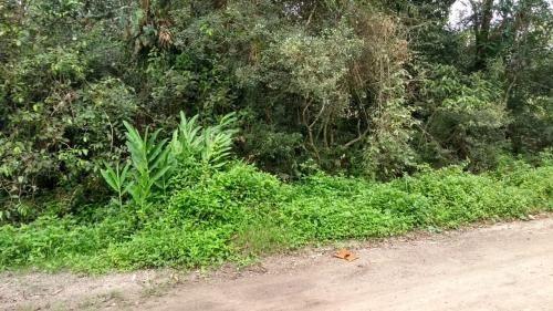 Terreno No Litoral Com 1717 M², Em Itanhaém/sp 6064-pc